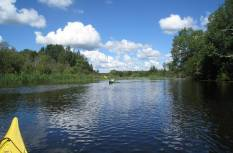 Süstamatk Pedja jõel